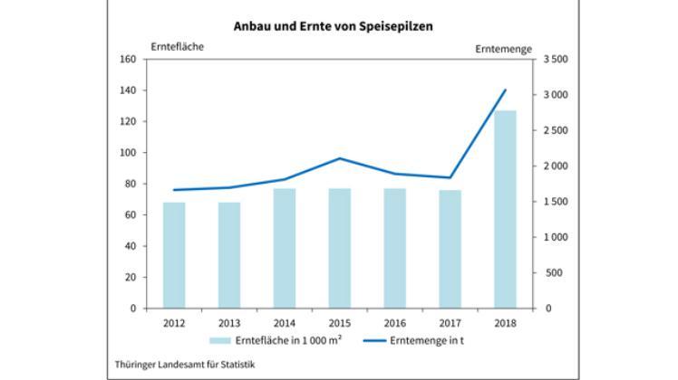 Statistik Thüringen