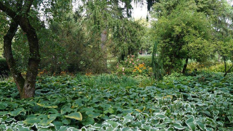 Forderung Modernisierung Von Landschaftsgarten Gabot De