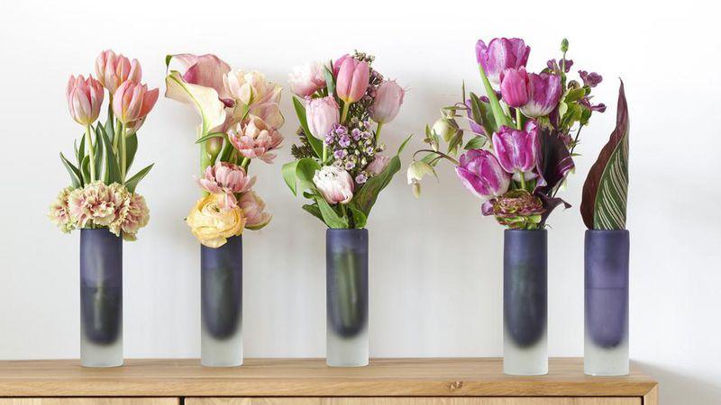 Bbh Tulpe Ist Schnittblume Des Monats Januar Gabotde