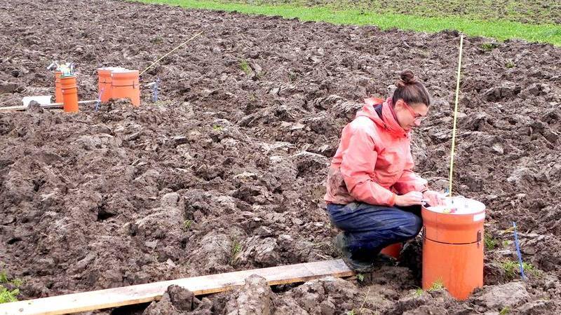 Landwirtschaft verzicht auf pflug ist gut f r boden und for Boden newsletter