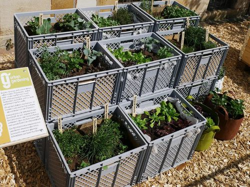 urban gardening projekt in metropolregion. Black Bedroom Furniture Sets. Home Design Ideas