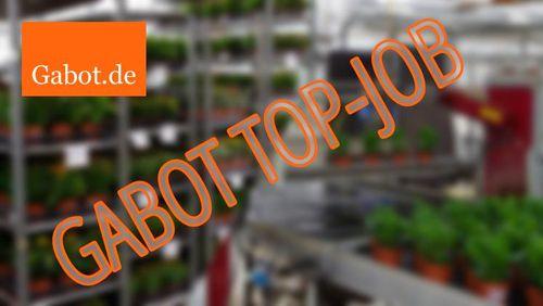 Top Job: Karrierechance bei Gartenbau Rednitzhembach Schmid als Einkäufer - GABOT