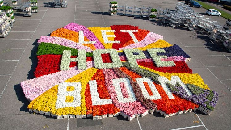 "Blumenbüro Holland launcht ""Let Hope Bloom"". Bild: BBH."