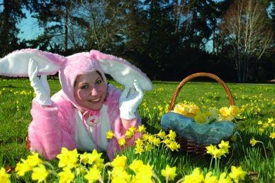 Herrenhäuser Gärten Sommersaison Beginnt Am 29 März Gabotde