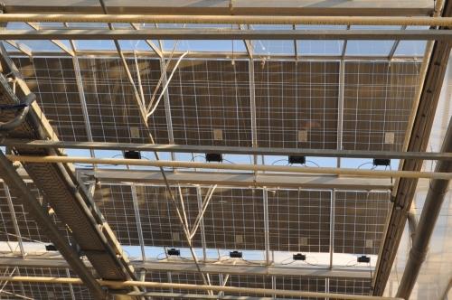 Gartnerei Klein Gewachshaus Mit Photovoltaik Im Dach Gabot De