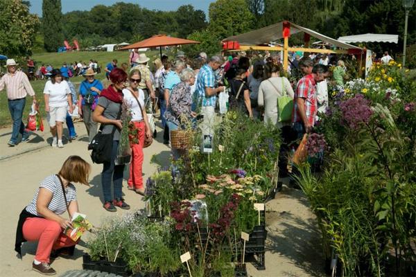botanischer garten staudenmarkt