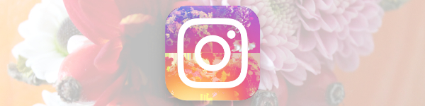 Die Instagram Top-Accounts der Floristik 2018