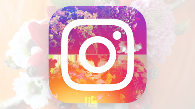 GABOT-Ranking - Die Instagram Top-Accounts der Floristik 2018